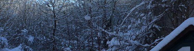 J'aime quand l'hiver ressemble à l'hiver…