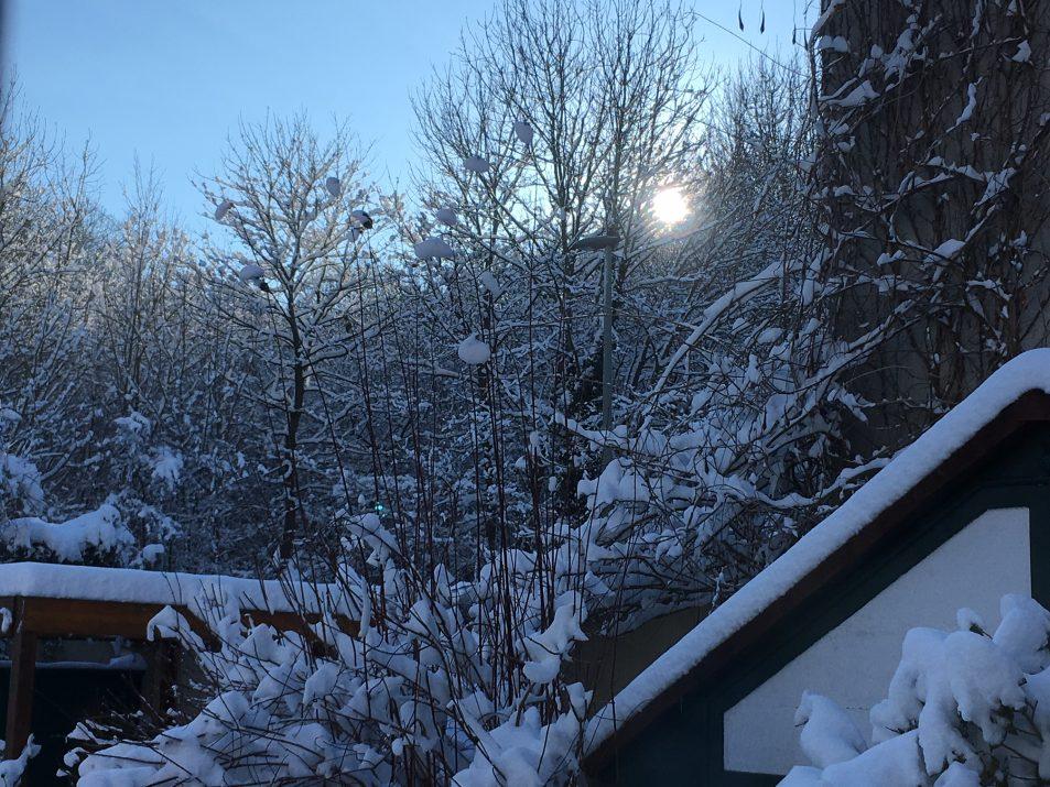 aube sur la neige